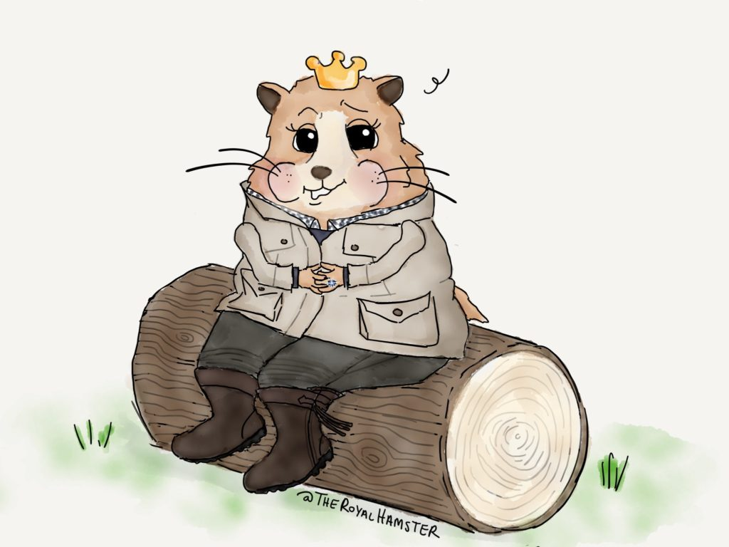 EXCLUSIVE:  Marvin the Royal Hamster gives first Interview